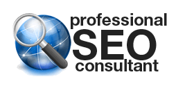 Professional SEO strategy